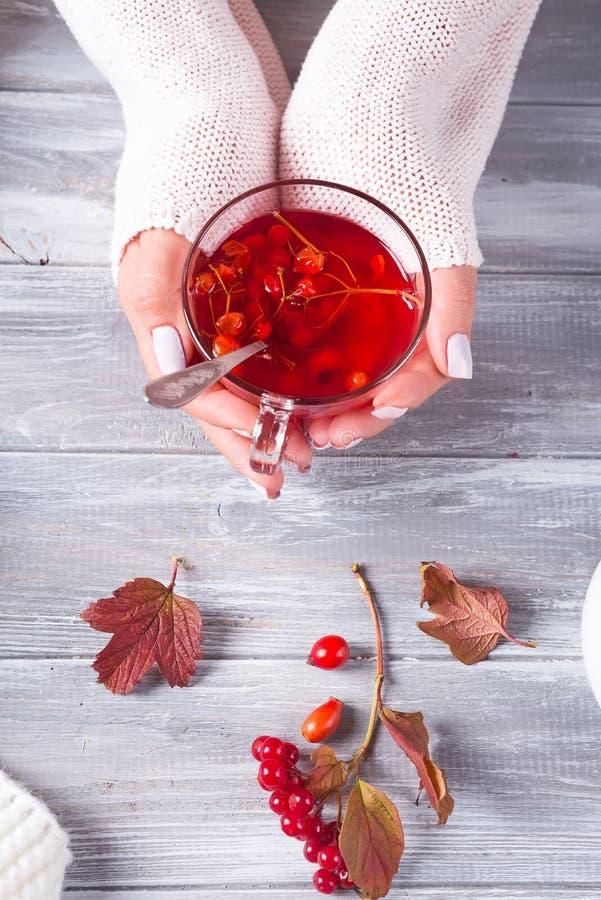 As mãos fêmeas em uma camiseta feita malha guardam um copo do chá com bagas em uma tabela de madeira cinzenta Vista superior imagem de stock