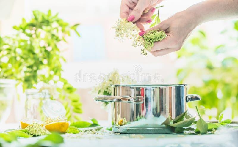 As mãos fêmeas preparam elderflowers na tabela com cozimento do potenciômetro, do limão e do açúcar Fatura caseiro do xarope ou d imagens de stock royalty free