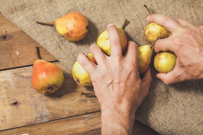 As mãos tomam poucas peras em placas de madeira imagens de stock