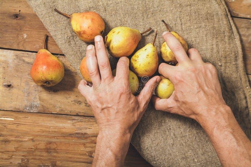 As mãos tomam poucas peras em placas de madeira fotografia de stock