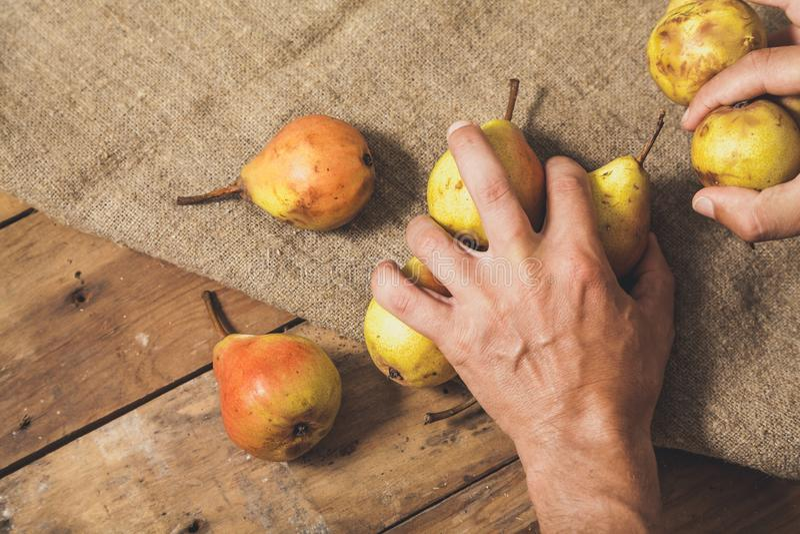 As mãos tomam poucas peras em placas de madeira imagem de stock