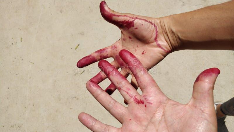 As m?os e os dedos pintaram vermelho fotografia de stock