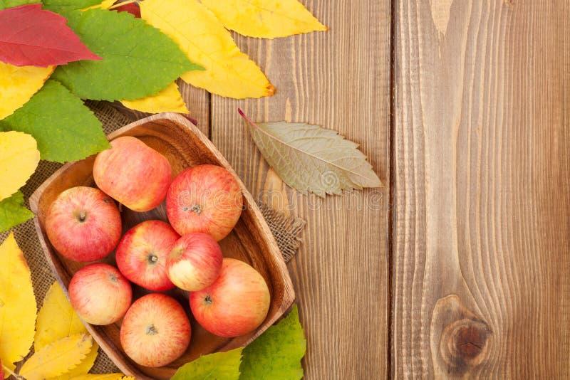 As maçãs na bacia e nas folhas de outono coloridas woden sobre o fundo fotos de stock