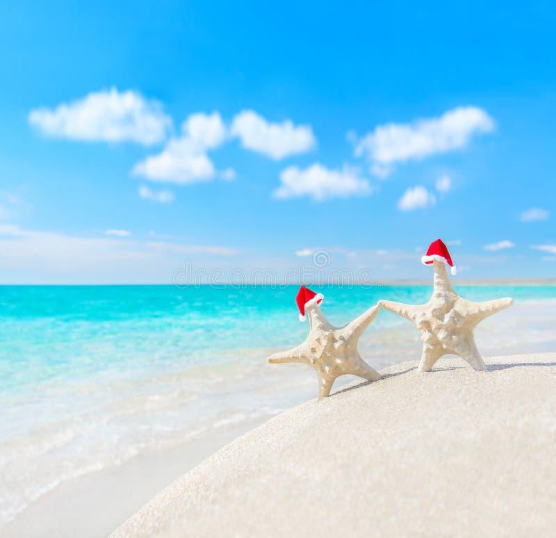 as Mar-estrelas acoplam-se em chapéus de Santa na praia do mar Anos novos ou Cristo imagens de stock royalty free