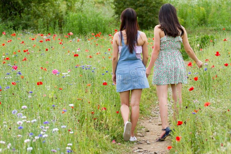 As meninas andam para trás no campo de flor da papoila foto de stock royalty free