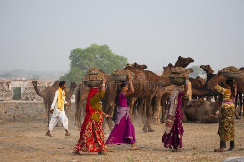 As meninas de Rajasthani foto de stock