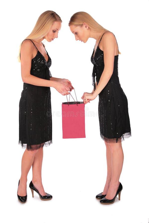 As meninas gêmeas olham dentro para ensacar imagens de stock