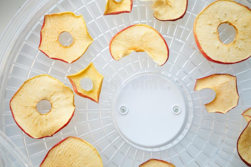 As microplaquetas tingidas frescas da maçã prepararam-se em um secador home das frutas e legumes Conceito saudável do alimento do imagem de stock royalty free