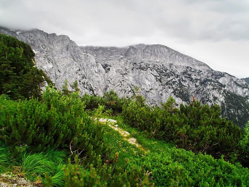 As montanhas alpinas em Áustria imagem de stock royalty free