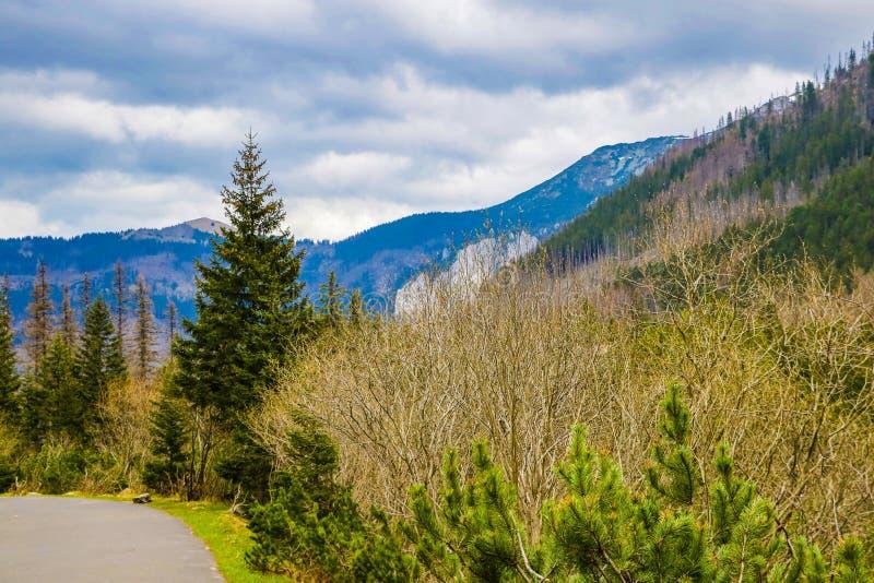 As montanhas altas de Tatras, são uma cordilheira ao longo da beira de Eslováquia na região de Presov, e Polônia do sul no foto de stock