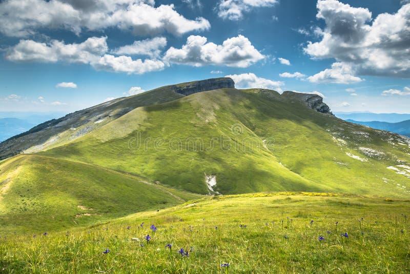 As montanhas de Pyrenees ajardinam - a garganta de Anisclo no verão Huesca, fotografia de stock royalty free