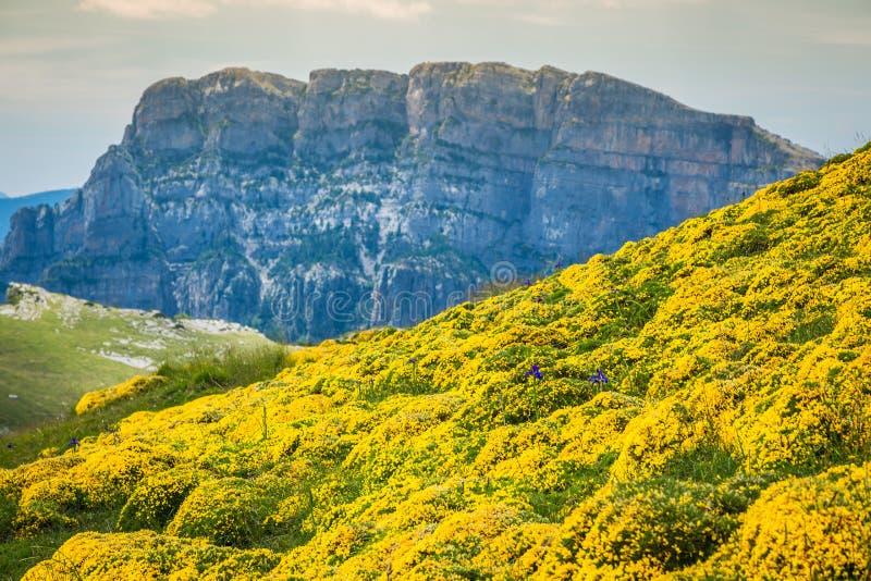 As montanhas de Pyrenees ajardinam - a garganta de Anisclo no verão Huesca, fotografia de stock