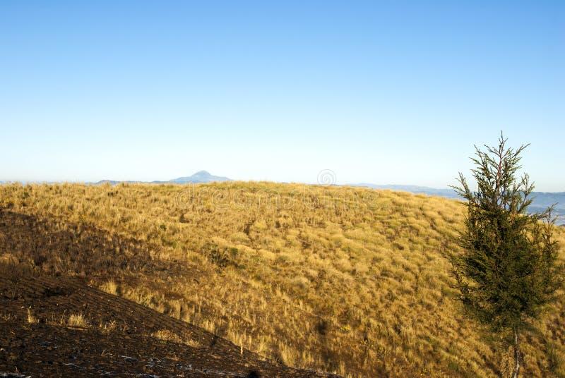 As montanhas do nascer do sol cultivaram com as vilas pitorescas na Guatemala, na n?voa e na geada rurais Am?rica Central fotografia de stock royalty free