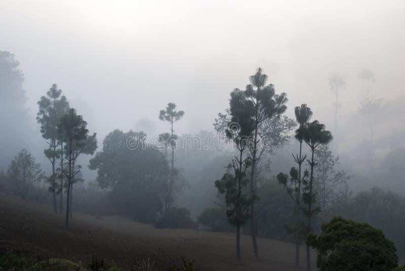 As montanhas do nascer do sol cultivaram com as vilas pitorescas na Guatemala, na n?voa e na geada rurais Am?rica Central foto de stock royalty free
