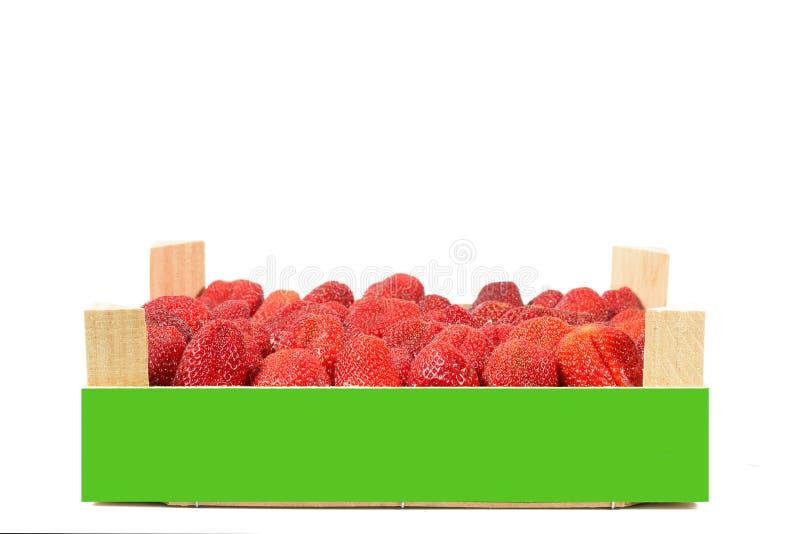 As morangos espanholas saborosos recolheram recentemente em uma caixa de madeira fotos de stock
