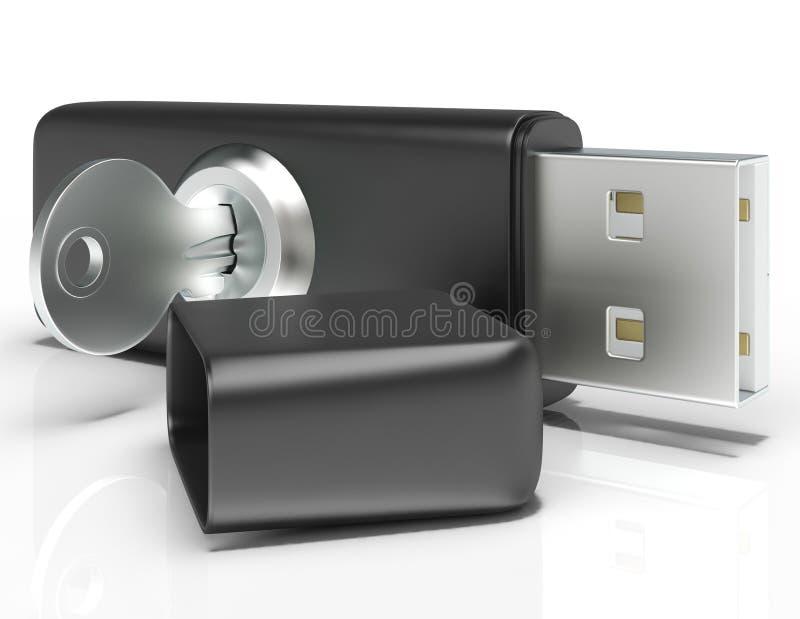 As mostras do flash e da chave do Usb fixam o armazenamento portátil ilustração royalty free