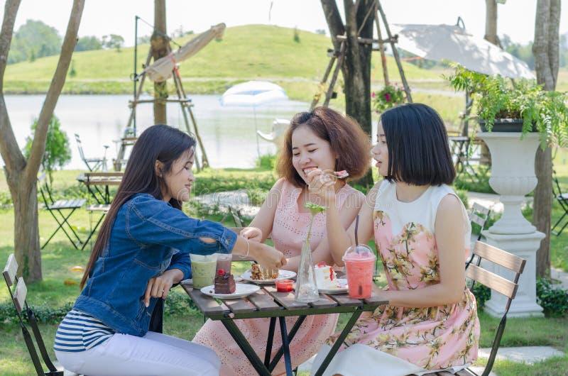 As mulheres apreciam comer e falar junto imagens de stock