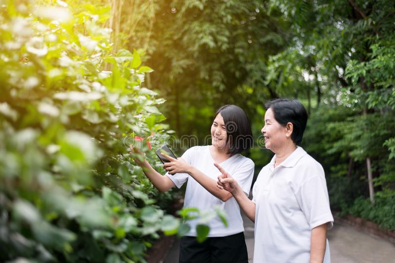 As mulheres asiáticas que olham a apreciação e a liberdade do sentimento da flor relaxam junto na manhã fotos de stock royalty free