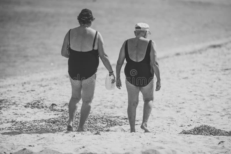 As mulheres idosas andam no litoral, mar no fundo As senhoras nos roupas de banho que andam na areia encalham, vista traseira Avó imagens de stock