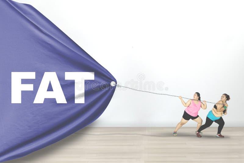 As mulheres obesos arrastam o texto gordo imagens de stock