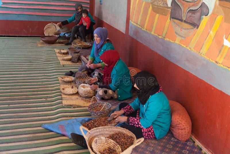 As mulheres preparam o óleo do argão no deserto de sahara perto de c4marraquexe imagens de stock