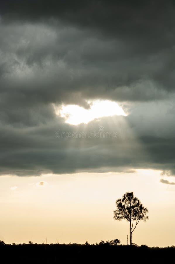 As nuvens de tempestade e o sol crepuscular irradiam nos marismas imagens de stock
