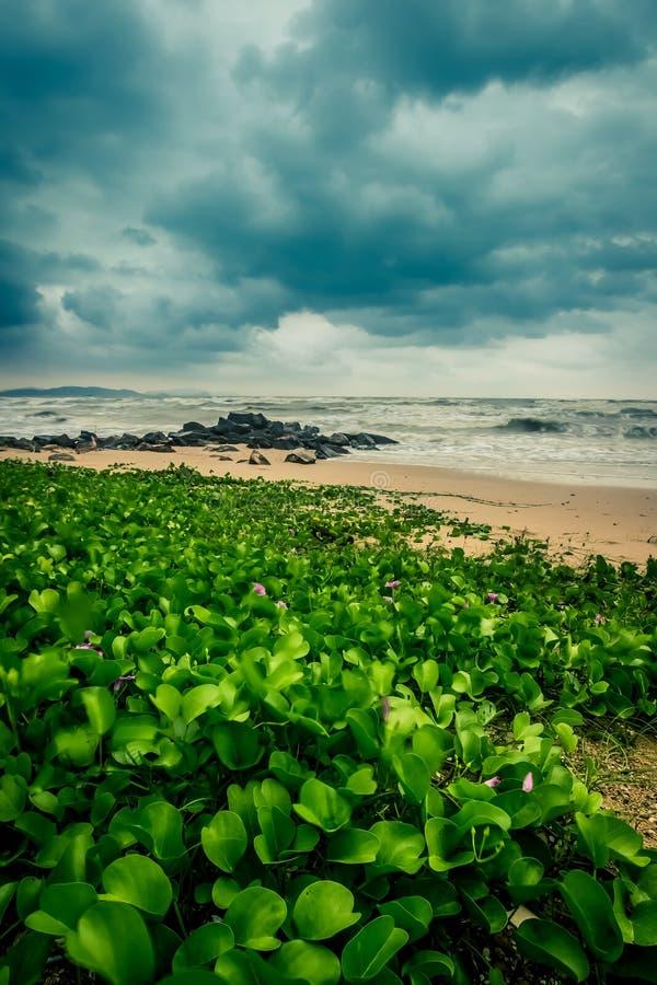 As ondas fortes devido à chuva atacam na praia de Pharadonphap na província de Chumphon, Tailândia do sul imagem de stock