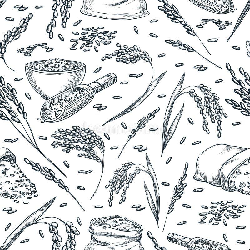 As orelhas do cereal do arroz, vector o teste padrão sem emenda Ilustração tirada mão do esboço Fundo asiático do pacote do alime ilustração royalty free