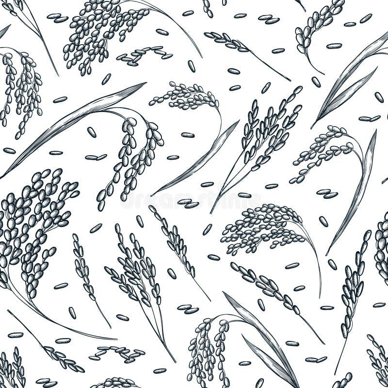 As orelhas do cereal do arroz, vector o teste padrão sem emenda Ilustração tirada mão do esboço Fundo asiático do pacote do alime ilustração do vetor