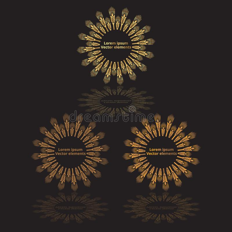 As orelhas do trigo, a aveia ou os logotypes do vetor da cevada três ajustaram-se dourado no preto ilustração do vetor
