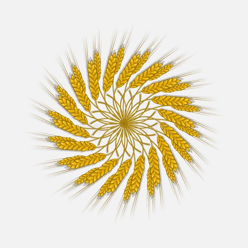 As orelhas do trigo, da cevada ou do centeio são tecidas em um pacote ilustração do vetor