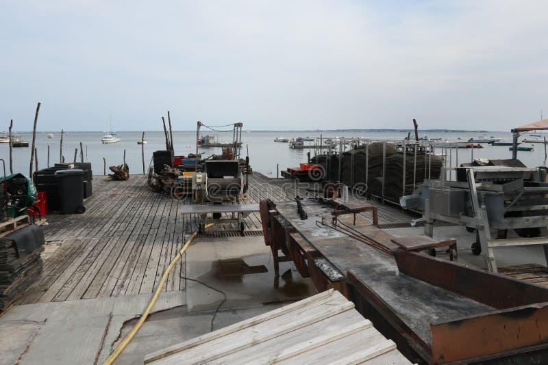 As ostras cultivam o mercado do alimento dos fazendeiros do lugar do trabalhador das gaiolas da indústria imagens de stock