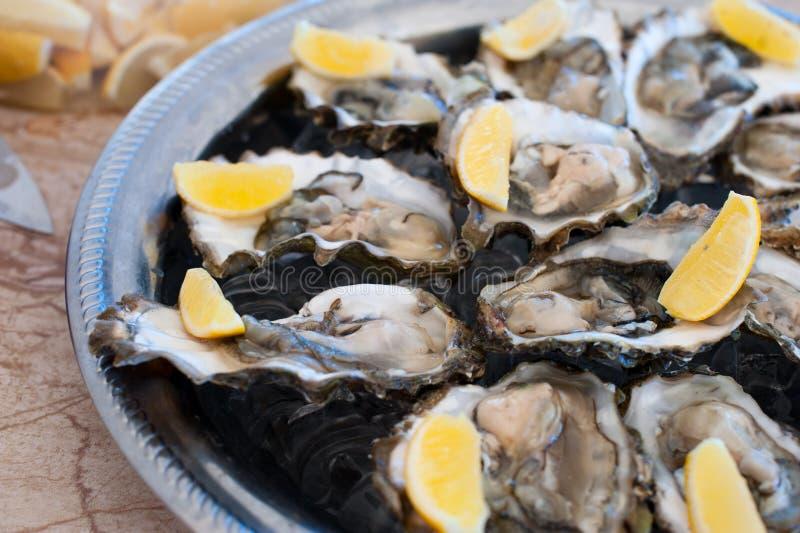 As ostras frescas encontram-se em uma bandeja de gelo e de limão imagem de stock