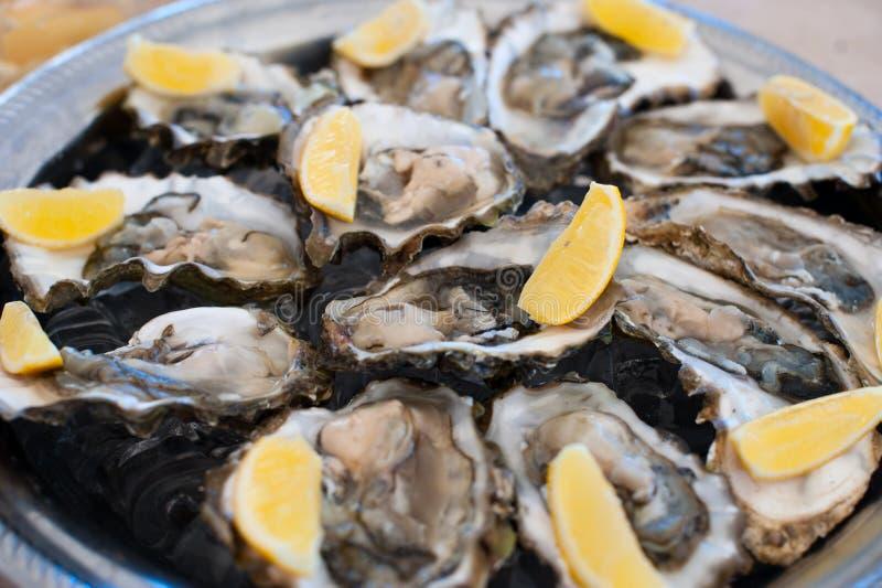 As ostras frescas encontram-se em uma bandeja de gelo e de limão fotografia de stock royalty free