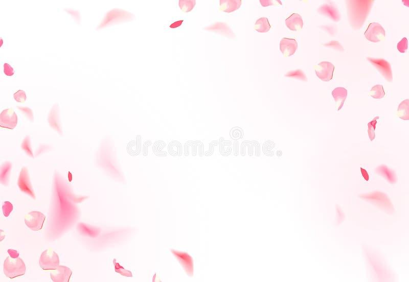 As pétalas cor-de-rosa luxuosas delicadas estão caindo no ar no cartão romântico branco do vetor ilustração stock