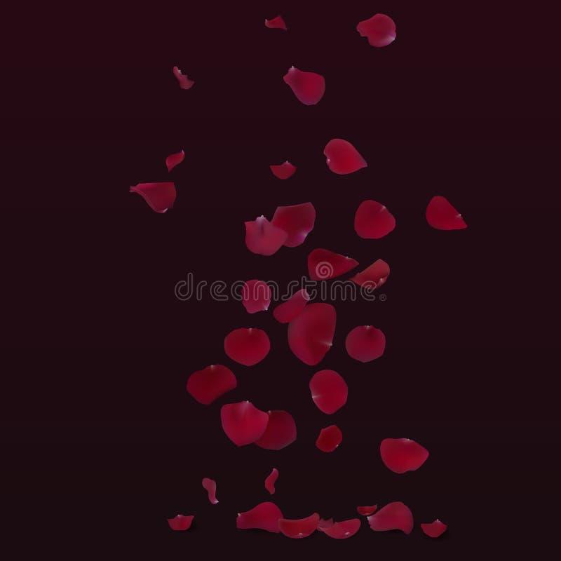 As pétalas cor-de-rosa vermelhas voam para baixo ilustração do vetor