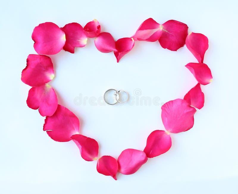 As pétalas da flor cor-de-rosa no coração dão forma com alianças de casamento dos pares no fundo branco imagens de stock royalty free