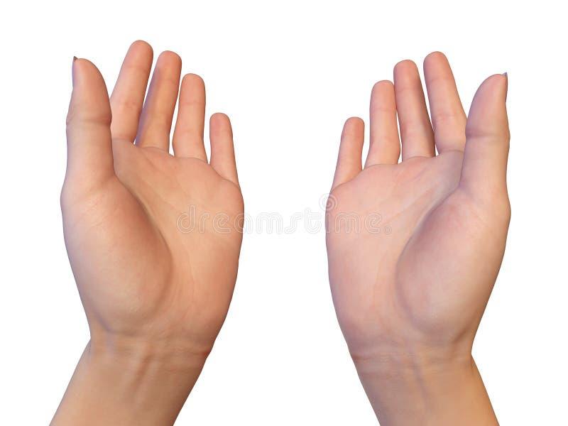 As palmas fêmeas abertas vazias estão dando algo imagem de stock