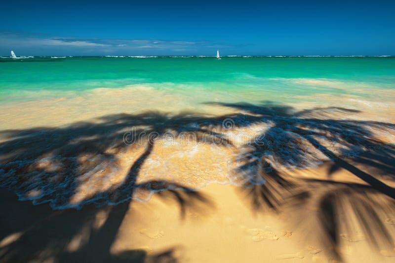 As palmeiras sombreiam na praia tropical Punta Cana, dominiquense com referência a foto de stock royalty free