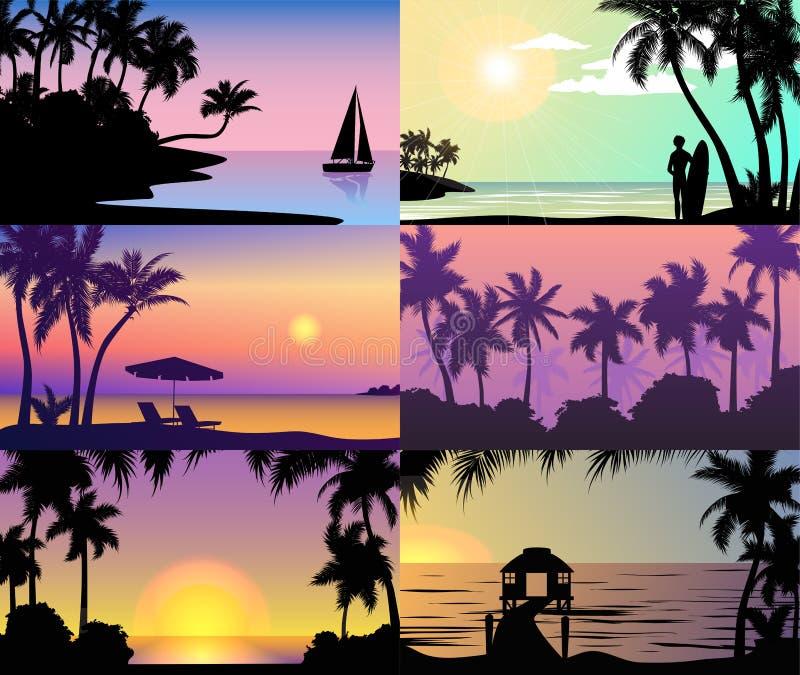 As palmeiras tropicais da natureza das férias do por do sol da noite do verão mostram em silhueta a paisagem da praia de feriados ilustração do vetor
