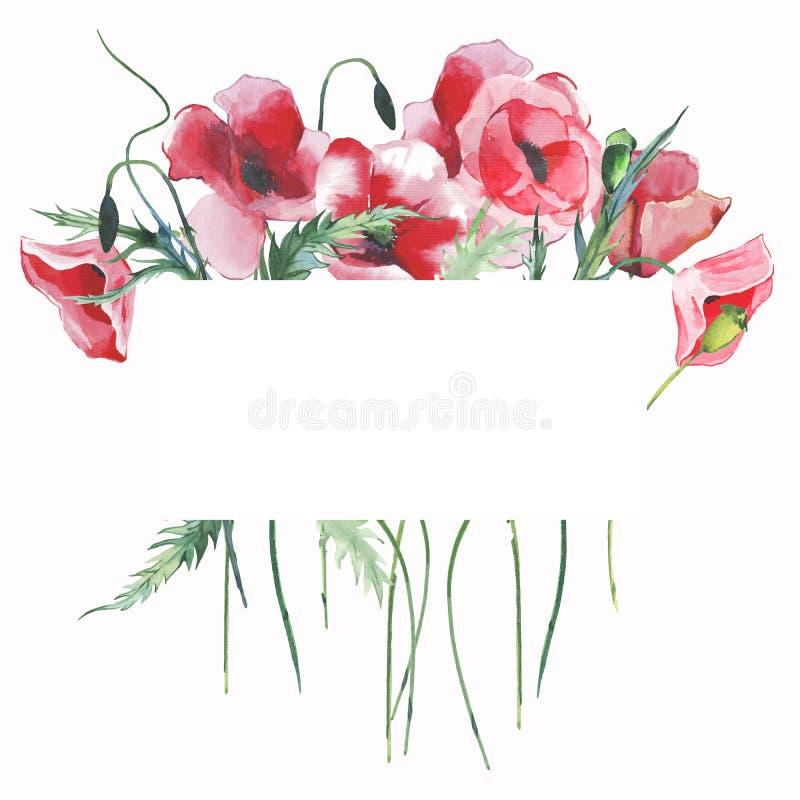 As papoilas vermelhas florais ervais do outono brilhante bonito maravilhoso do verão florescem com mão verde da aquarela do cartã ilustração royalty free