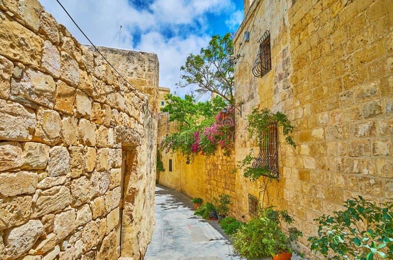 As paredes de pedra de Rabat, Malta foto de stock royalty free