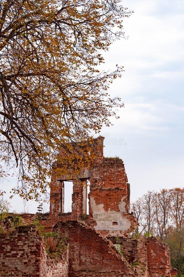 As paredes de tijolo vermelho hist?ricas arruinadas velhas abandonaram a constru??o destru?da no fundo da natureza de R?ssia foto de stock royalty free