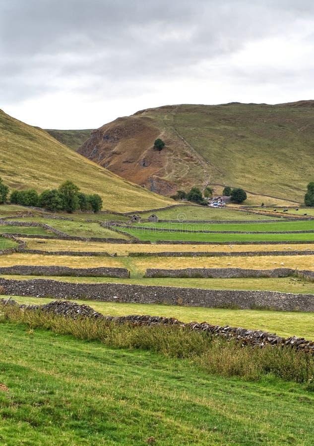 As paredes Drystone separam os campos coloridos, conduzindo à passagem do ` s de Winnat, distrito máximo fotografia de stock royalty free