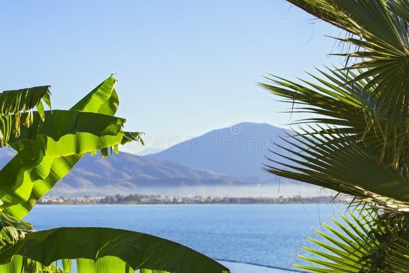 As partes superiores das palmeiras contra o mar azul com uma cordilheira no horizonte Mar da vista bonita cercado por palmeiras imagem de stock