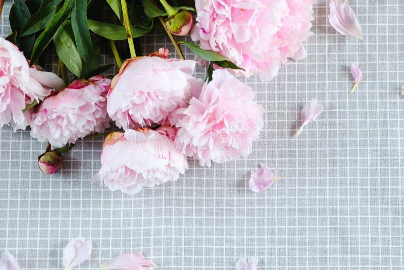 As peônias cor-de-rosa delicadas estão na tabela foto de stock