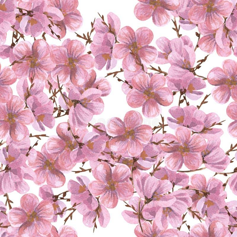 As peônias da aquarela modelam o teste padrão floral sem emenda Desenho do Aquarelle no fundo branco ilustração royalty free
