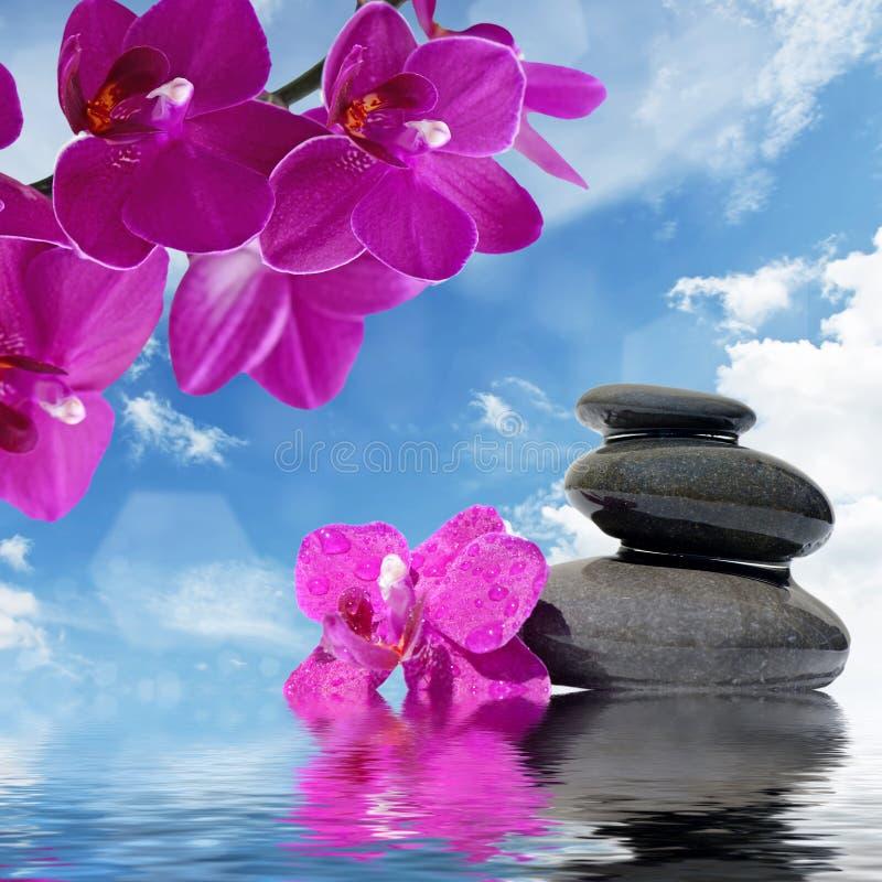 As pedras da massagem do zen e as flores da orquídea refletiram na água fotografia de stock