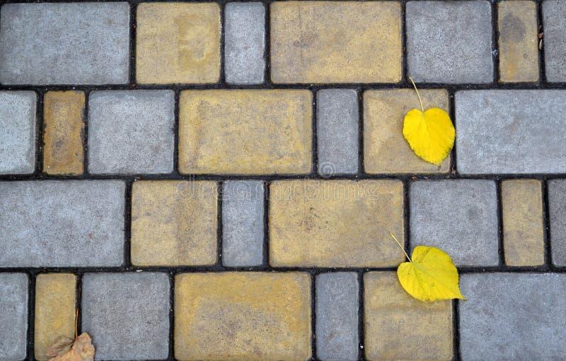 As pedras de pavimentação incomuns texture o fundo com as folhas de outono dos pares foto de stock