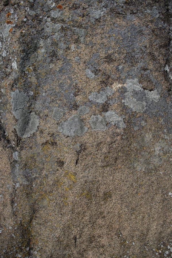 As pedras fotografaram o close-up, textura cinzenta bonita da mola imagem de stock